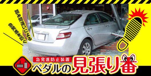 安全機能付き車限定免許 車の見張り番